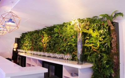Living wall installation as part of All Blacks hospitality  at OXO2 for Jack Morton for Rugby World Cup 2015