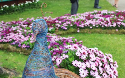 Wire and floral sculptural peacock installation