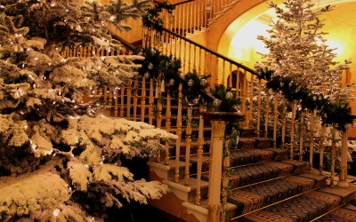 Snow flocked Christmas trees and staircase dressing for 116 Pall Mall, Home of the Institute of Directors